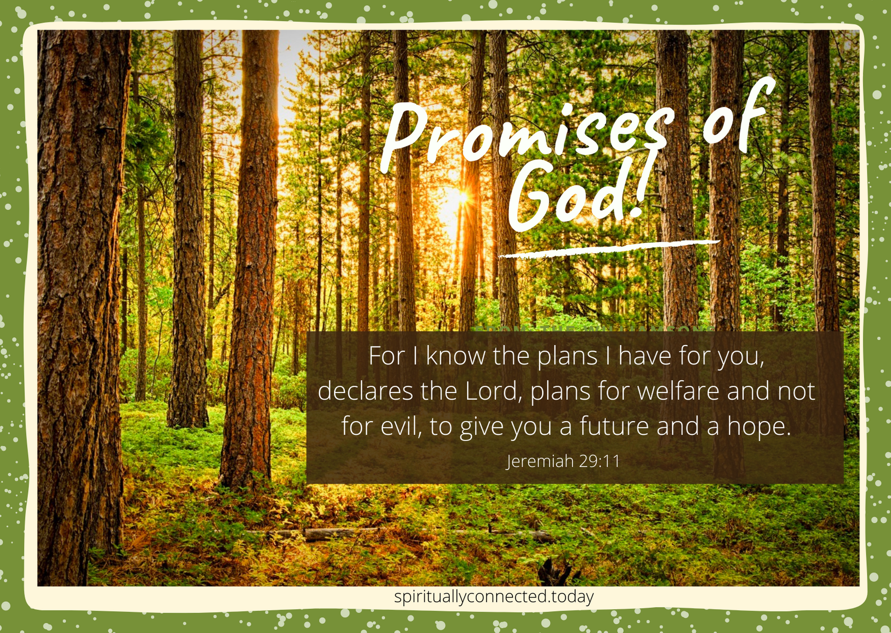 Walk in the Wisdom of God