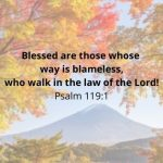 20 Bible Verses About Being Blessed and Thankful